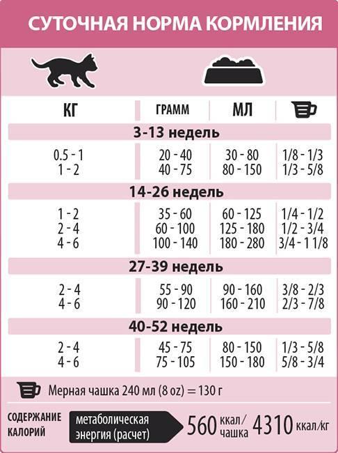 «гуаби» (корм для кошек и котят): описание