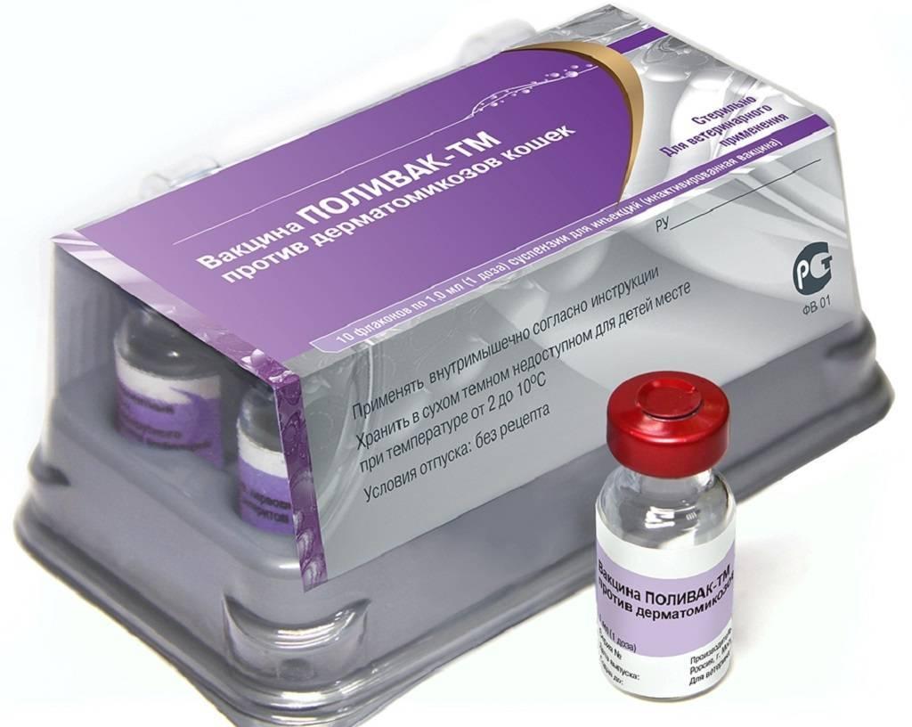 Поливак тм для кошек: инструкция по применению вакцины, отзывы
