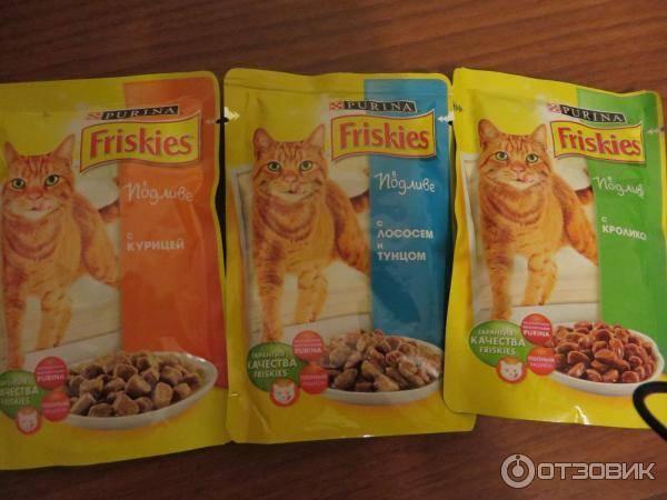 Корм для кошек friskies: отзывы и разбор состава - петобзор