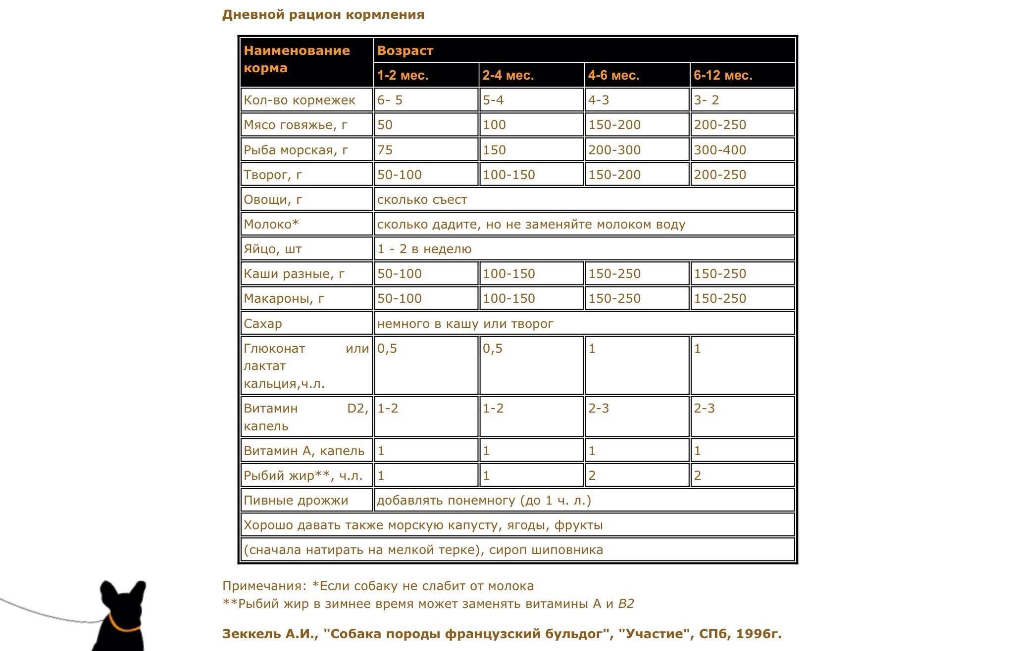 Основные правила кормления шарпеев: натуральное меню, готовые корма