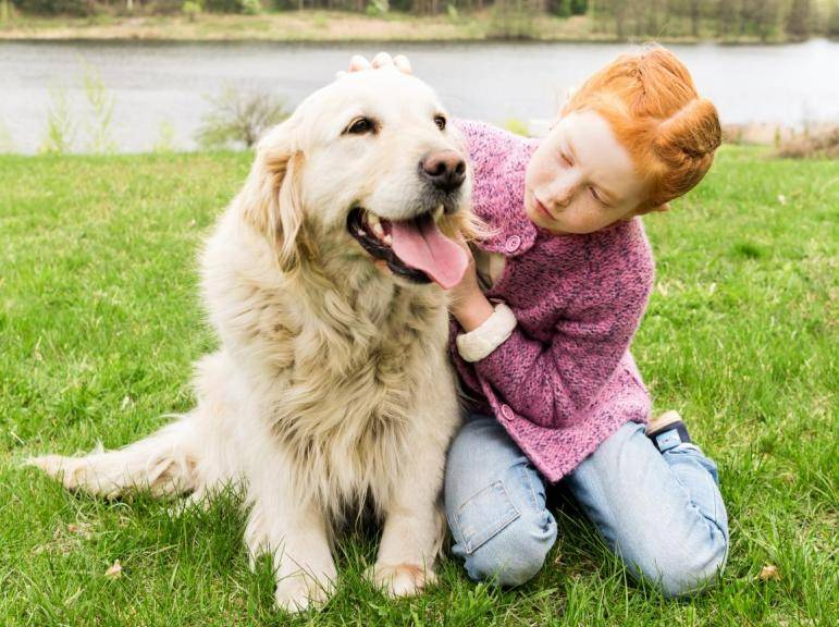 7 лучших пород собак для занятых людей