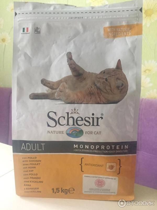 Шезир - корм для кошек: состав, плюсы и минусы