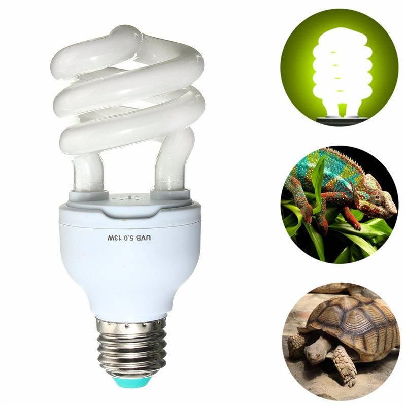 Последствия использования некачественных уф ламп для рептилий. уф лампа с aliexpress