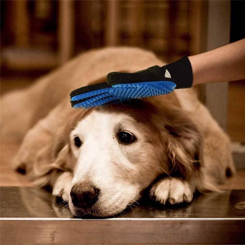 Как вычесывать собаку — как и чем вычесывать правильно гладкошерстных и длинношерстных собак (110 фото)