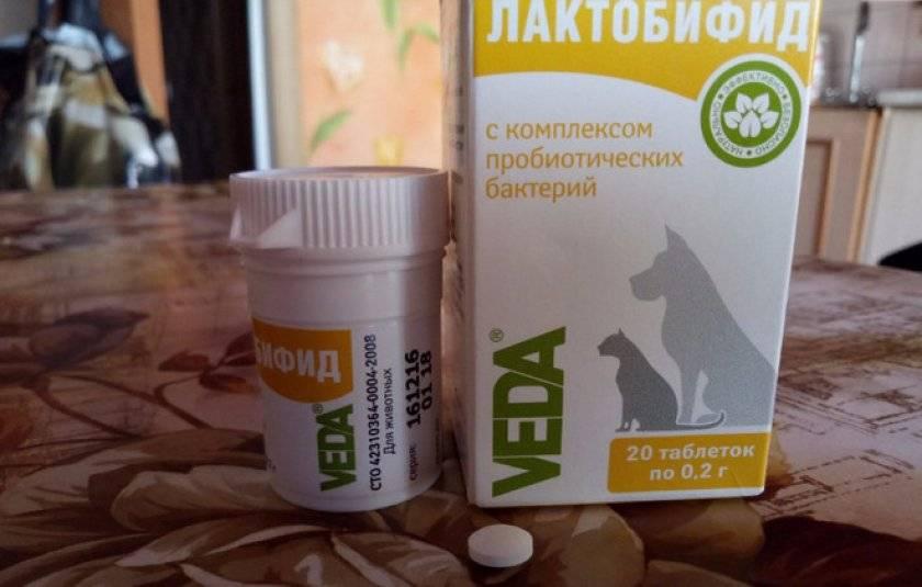 Пробиотики и пребиотики для собак: топ-15 препаратов
