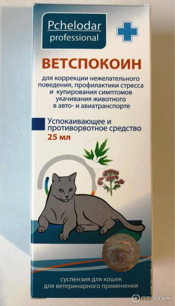 Ветспокоин для собак: нервы будут в порядке