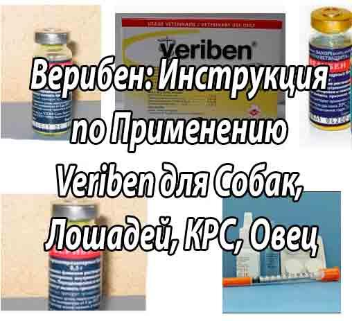 Ветеринарный препарат верибен: инструкция по применению - вет-препараты