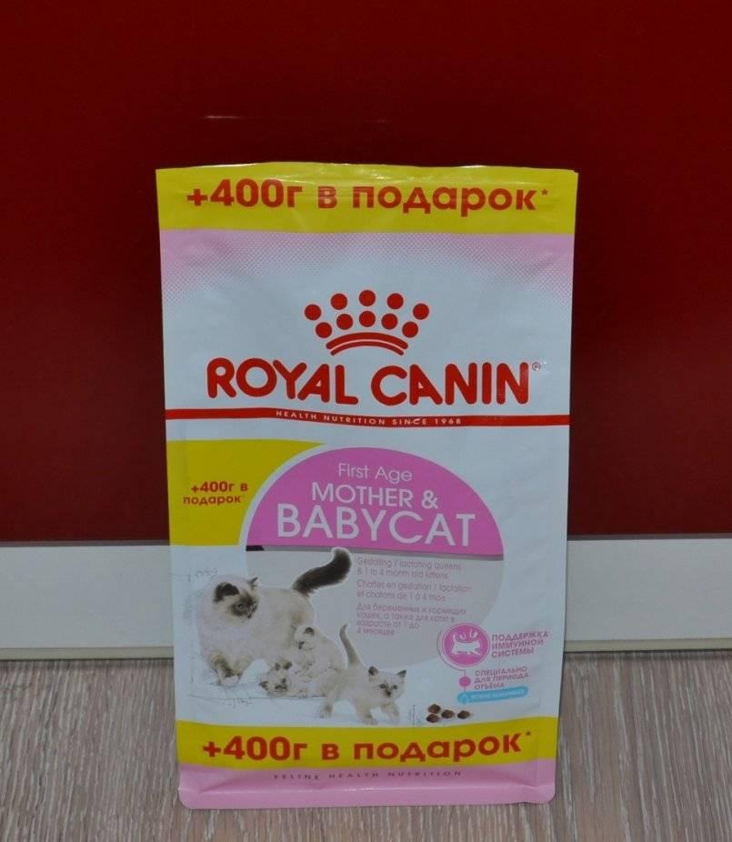 Корм для кошек guabi (гуаби): плюсы и минусы, отзывы ветеринаров