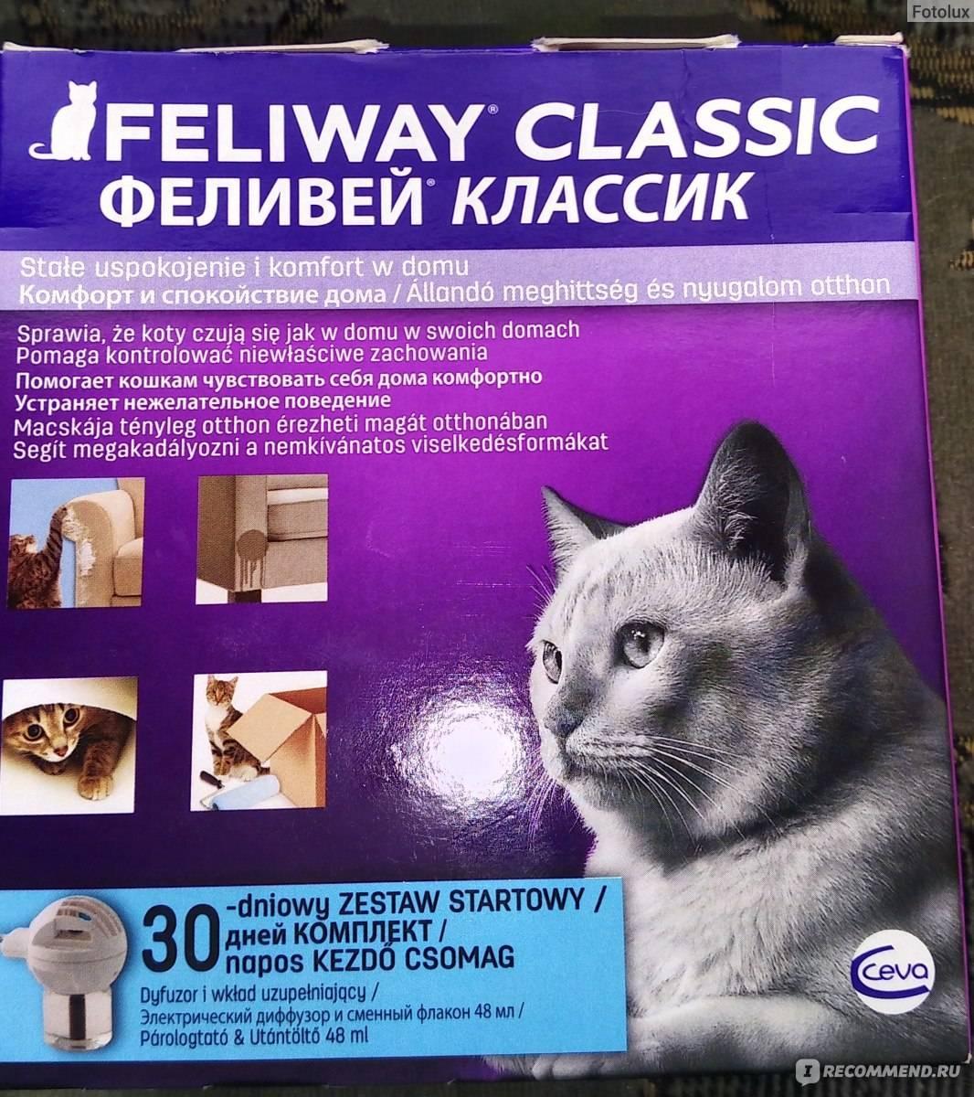 Успокоительный ошейник для кошек – как применять приспособление?