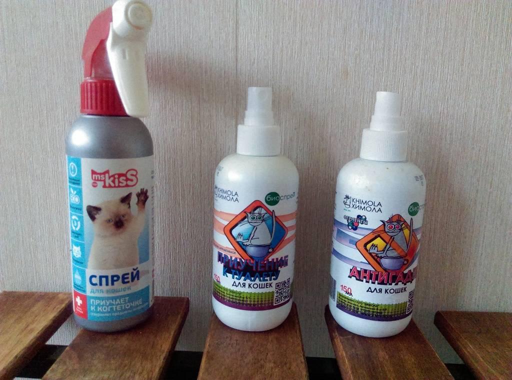 Антигадин для кошек: инструкция по применению, антигадин своими руками и отзывы владельцев
