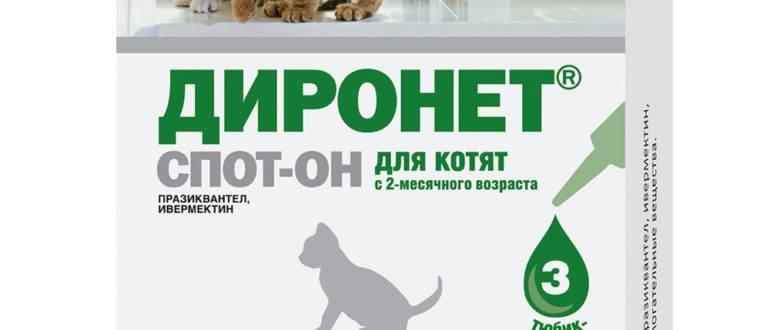 Диронет спот-он для кошек