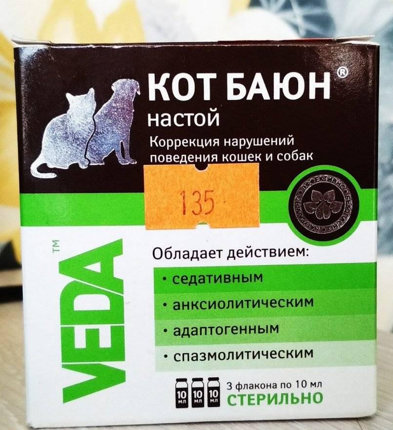 Обезболивающие для кошек