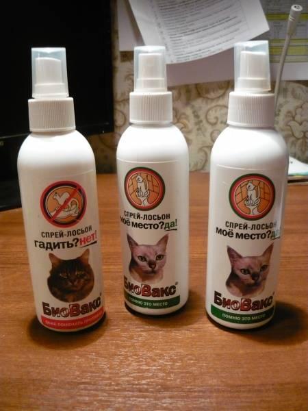 Антигадин для кошек: какой лучше, сделать своими руками