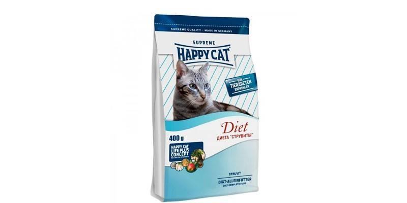 Особенности кормления кошек натуральной пищей и сухим кормом