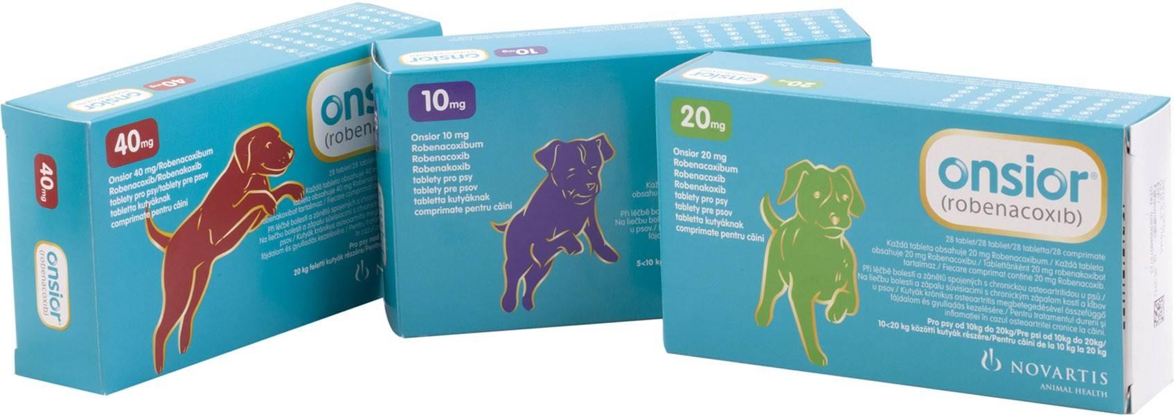 Онсиор для собак: инструкция по применению, состав и действие, отзывы специалистов