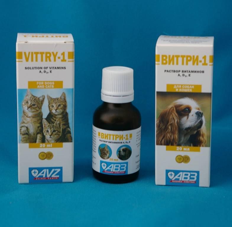 Виттри-1 для кошек: описание, инструкция по применению