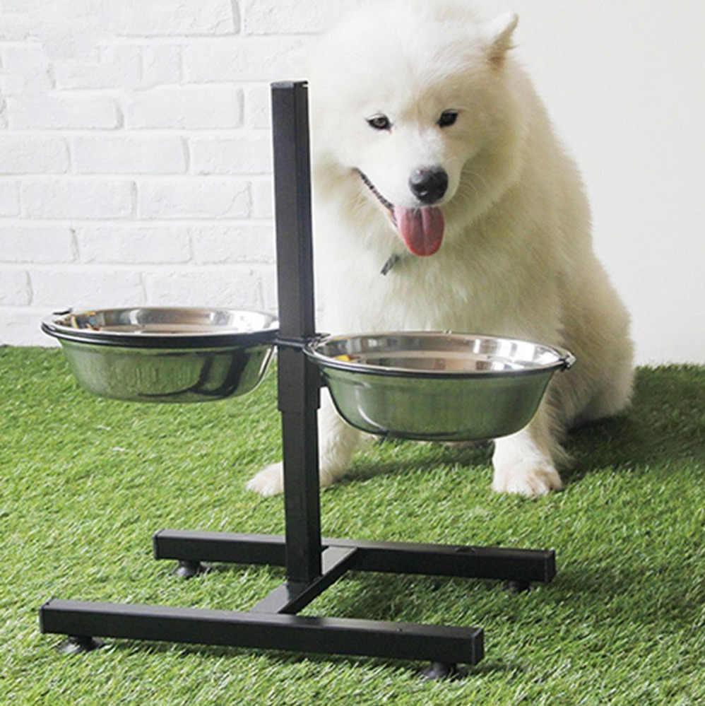 Какая она — идеальная миска для собаки?