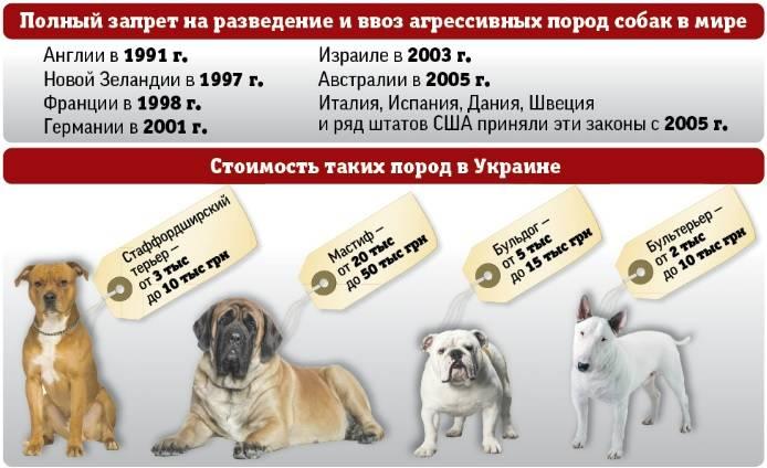 Перечень потенциально опасных собак — постановление правительства (проект)