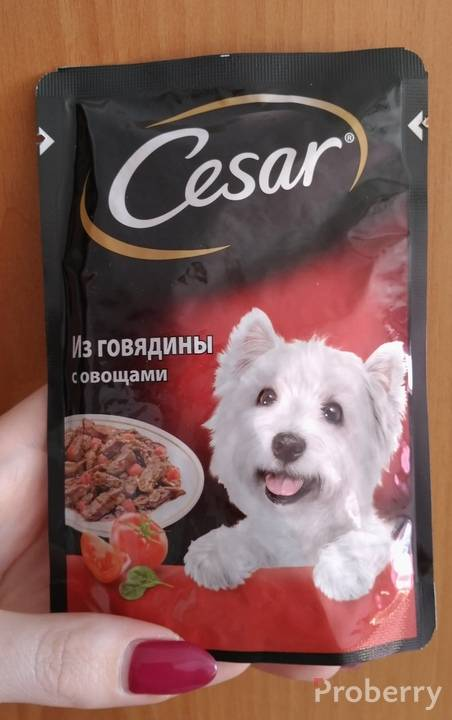 Зооменю, цезарь и трапеза: состав кормов для собак, линейка товара и отзывы