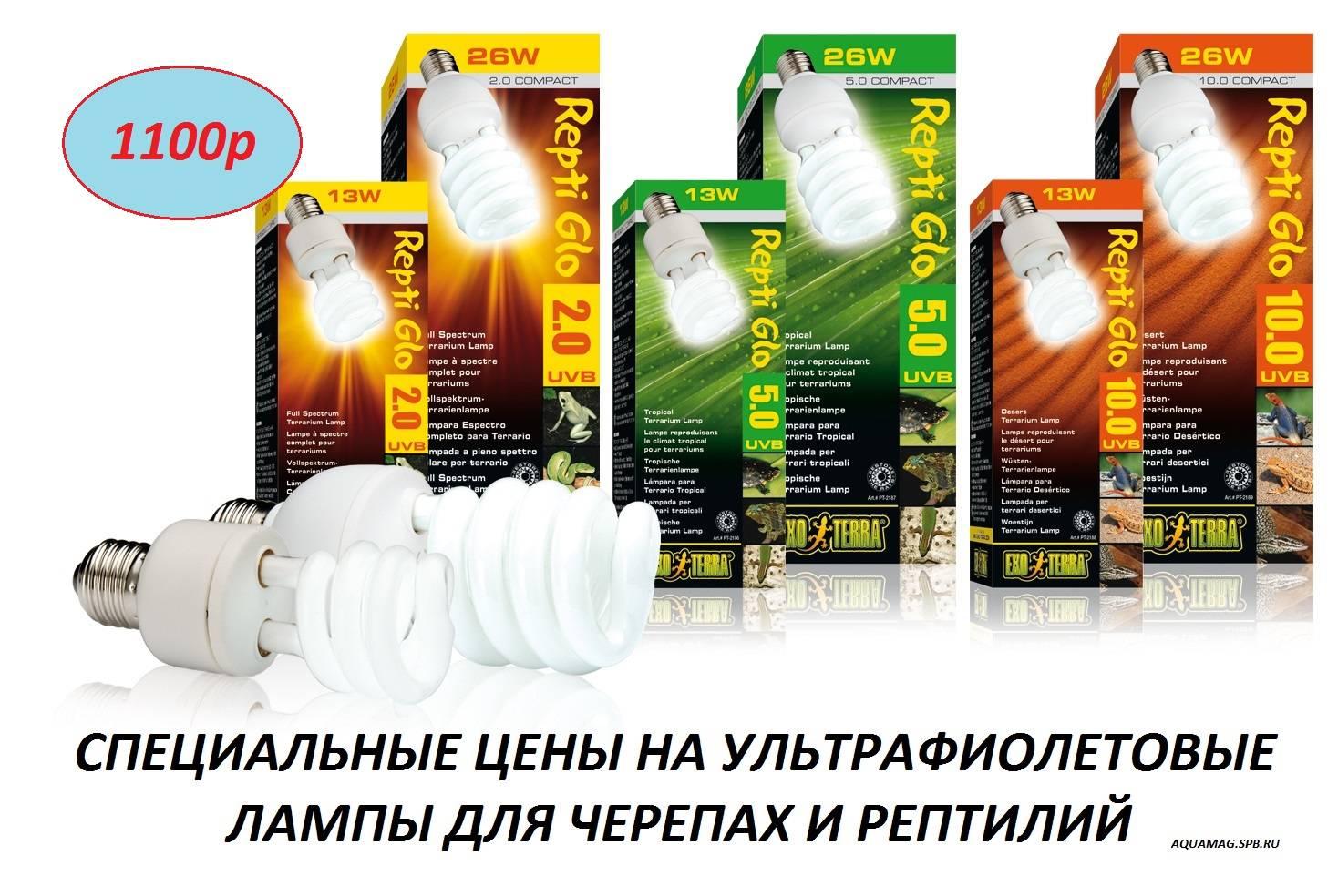 Зеркальная лампа накаливания для черепах. лампы ультрафиолетовые, накаливания для черепах и рептилий. виды искусственного освещения
