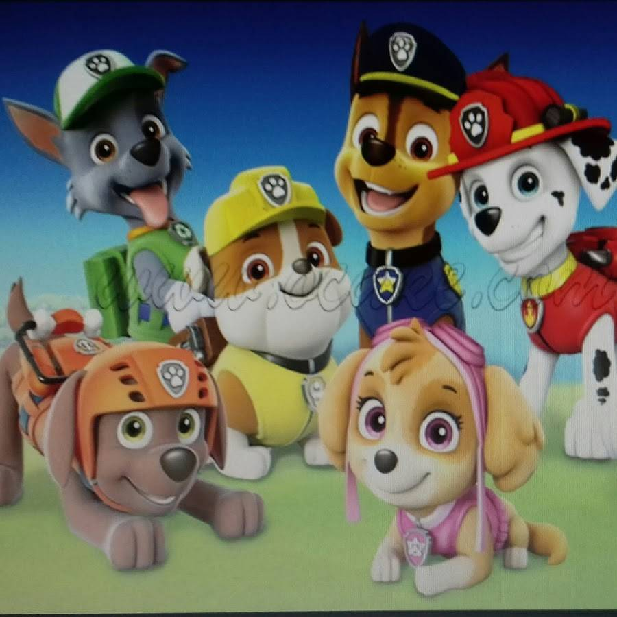 «щенячий патруль» — имена щенков и их фото, как зовут собак