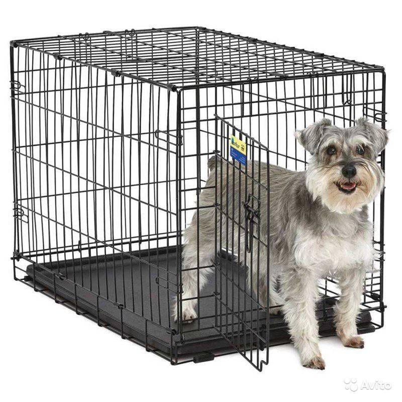 Вольер для собаки – чертежи, размеры, фото и видео