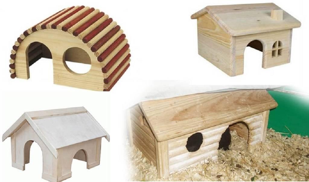 Игрушки для хомяков (34 фото): какие игрушки можно сделать своими руками в домашних условиях? требования к ним