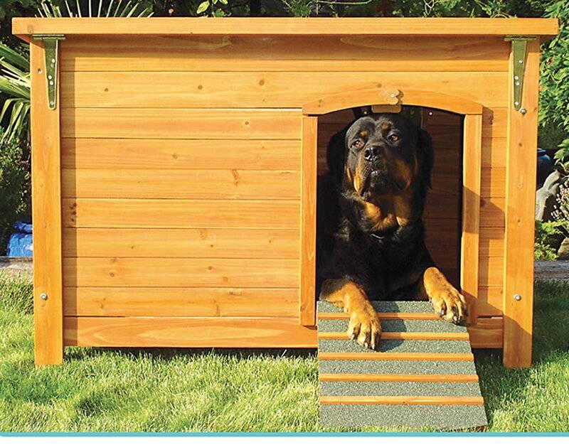 Как приучить собаку к будке во дворе - способы и рекомендации