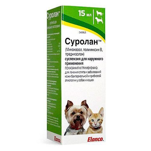 Суролан: ушные капли для кошек, инструкция по применению, состав и назначение, отзывы