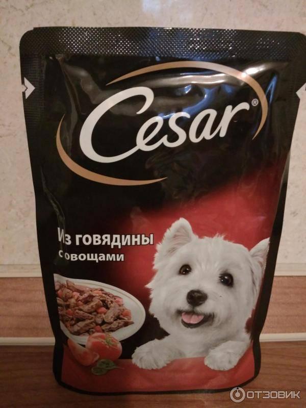 Консервированный корм для собак мелких пород cesar