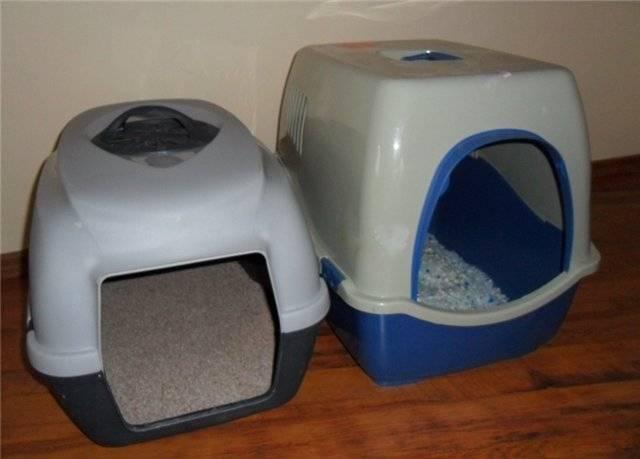 Туалеты для кошек закрытые: выбираем комфорт для животного и чистоту для дома