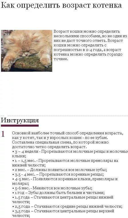 До какого возраста растут кошки