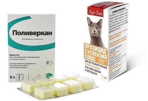 Поливеркан для кошек: инструкция и показания к применению, отзывы, цена