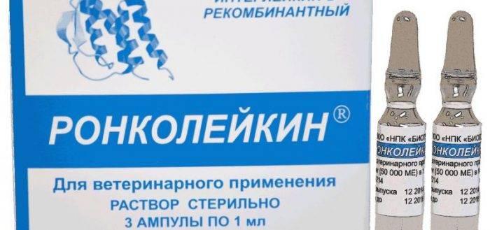 Ронколейкин - купить, цена и аналоги, инструкция по применению, отзывы в интернет ветаптеке добропесик
