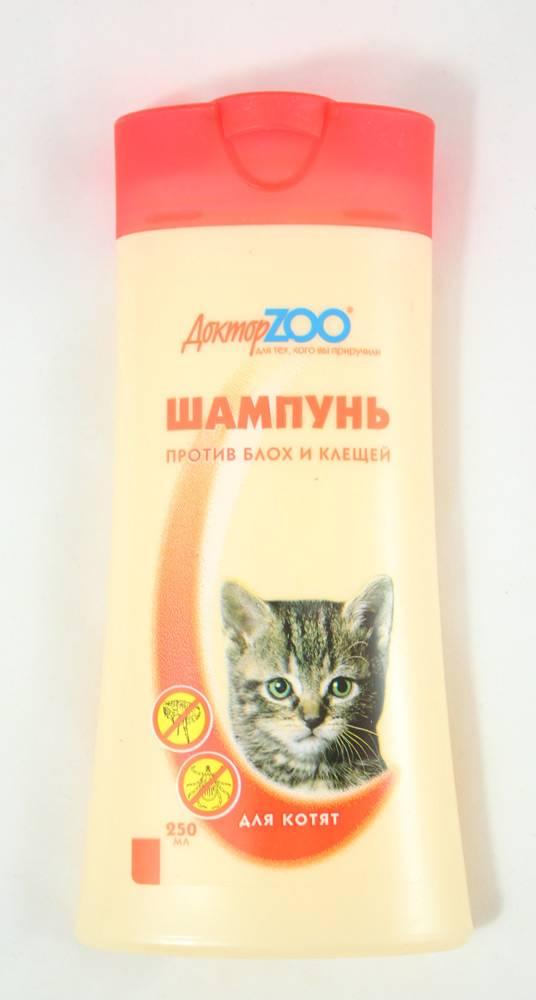 Шампунь для котят от блох: полезные рекомендации по удалению паразитов