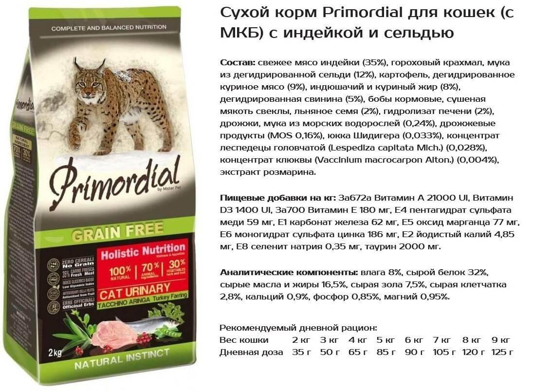 Корма эконом класса для кошек: список, состав, отзывы и цены