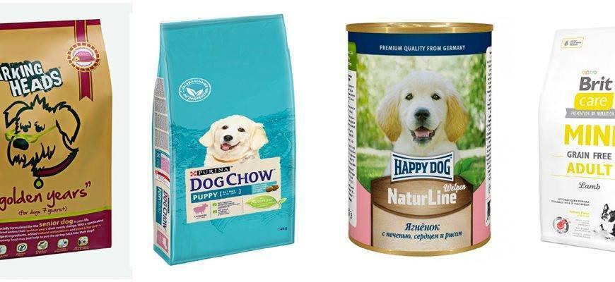 Корма для собак мелких пород (35 фото): корма премиум-класса для щенков маленьких собак и другие виды. рейтинг лучших производителей. отзывы
