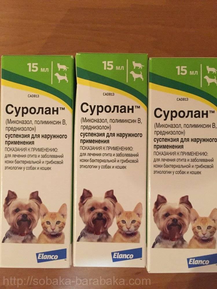 Суролан, препарат для лечения отитов у собак и кошек
