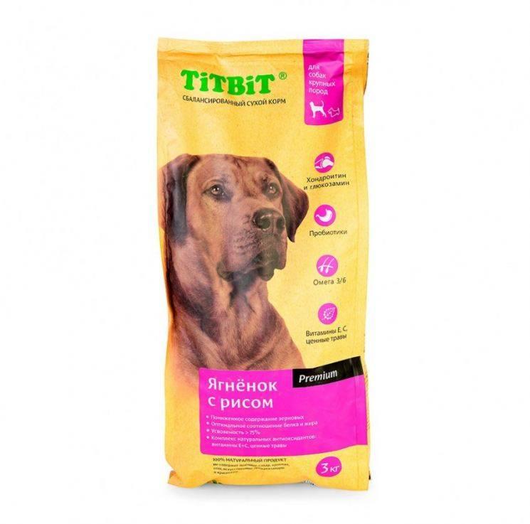 Лучший корм для собак: обзор популярных марок и критерии выбора