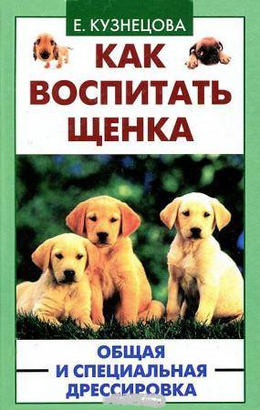 Основные моменты воспитания щенка