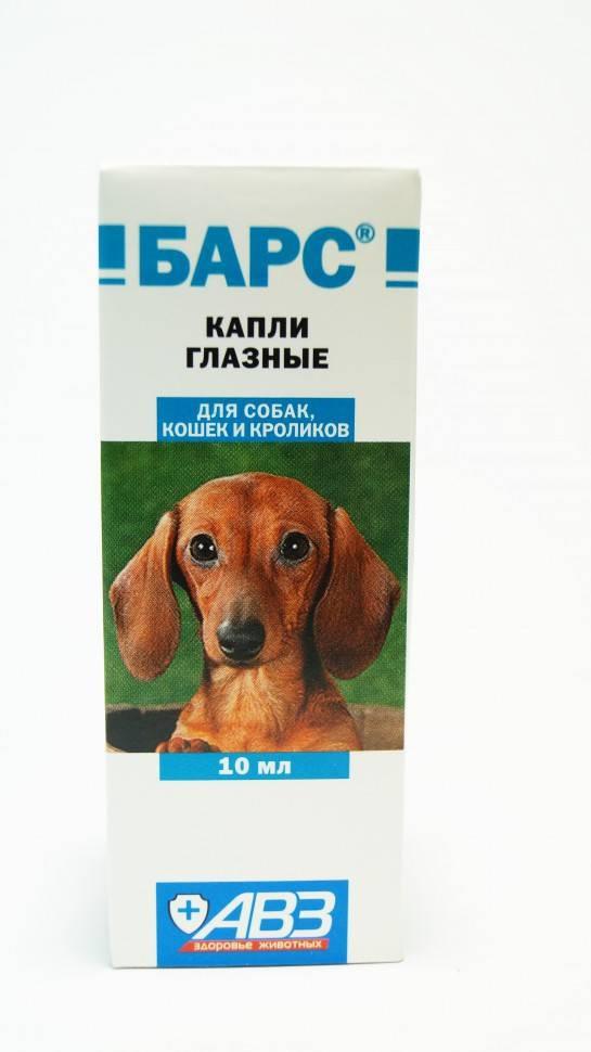 Капли «бриллиантовые глаза» для собак — инструкция по применению