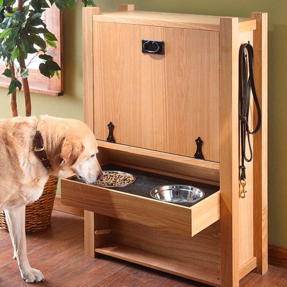 Собака в доме: советы, как обеспечить сохранность мебели и покрытий | houzz россия