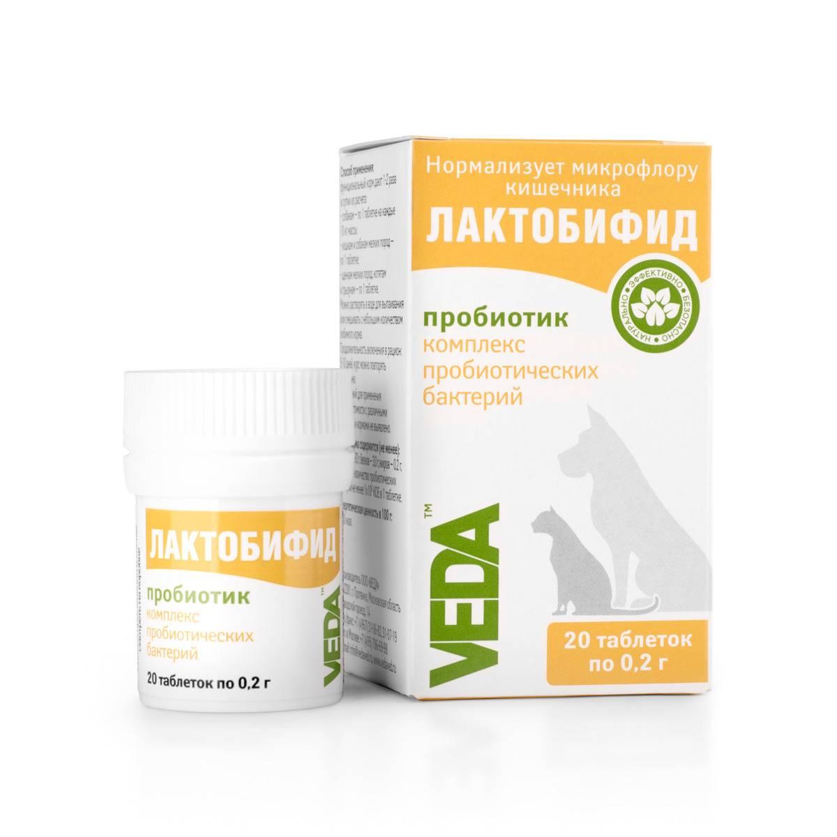 Для чего нужен пробиотик для собак лактобифид? полезно знать!