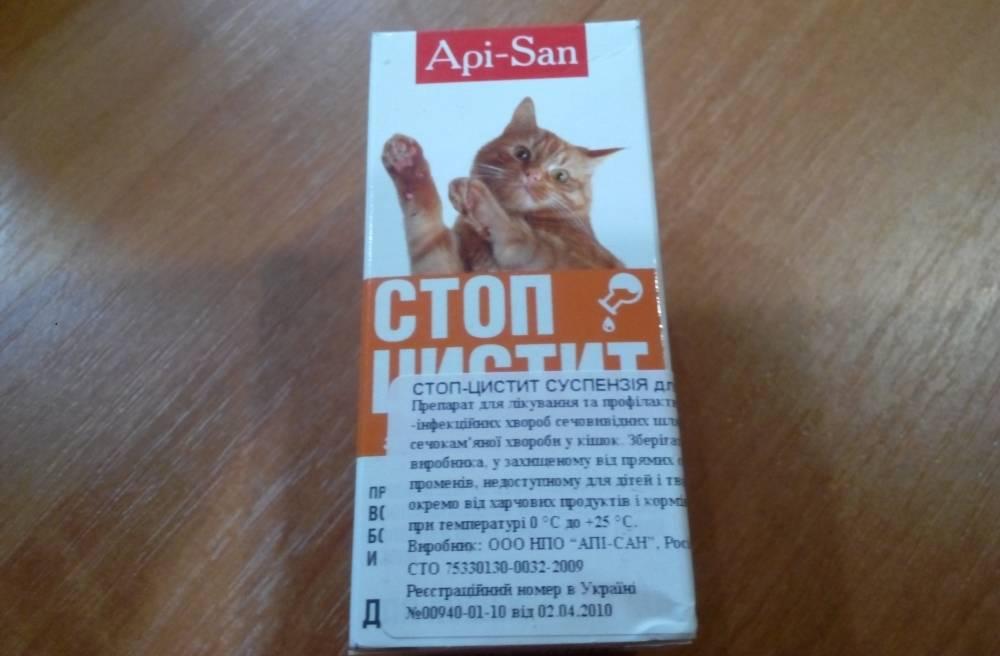 Котэрвин для кошек – назначение, инструкция, противопоказания, отзывы