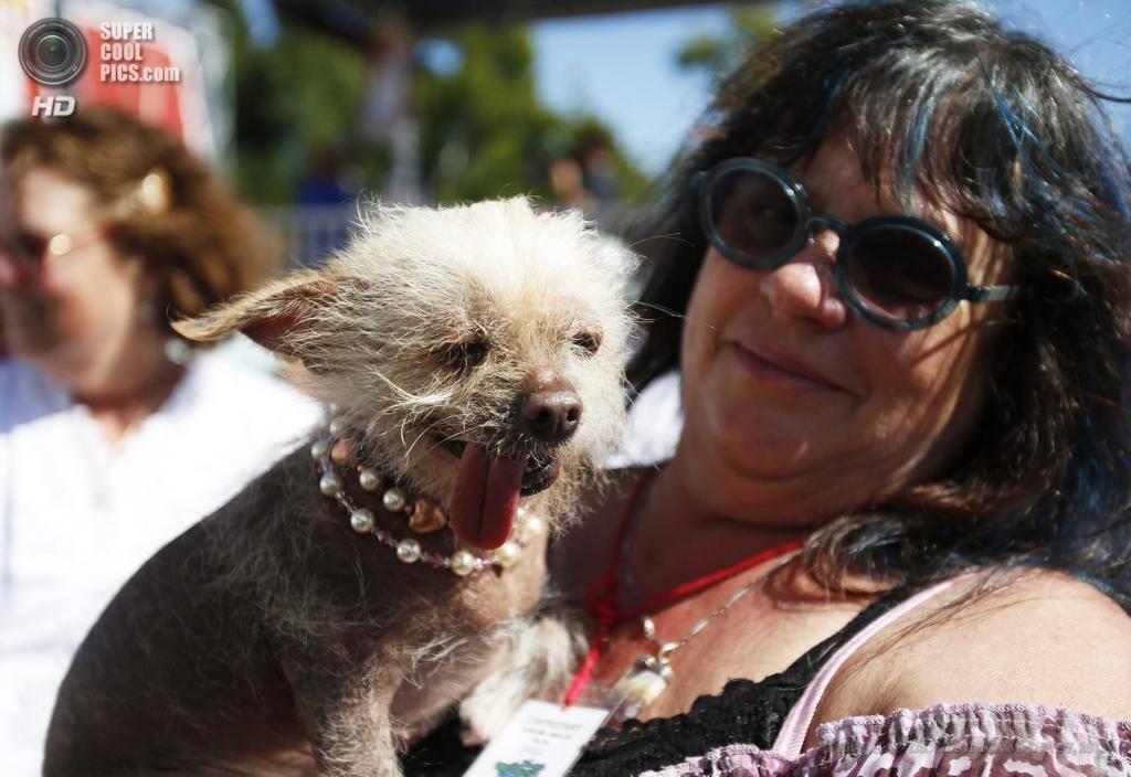 10 самых некрасивых пород собак