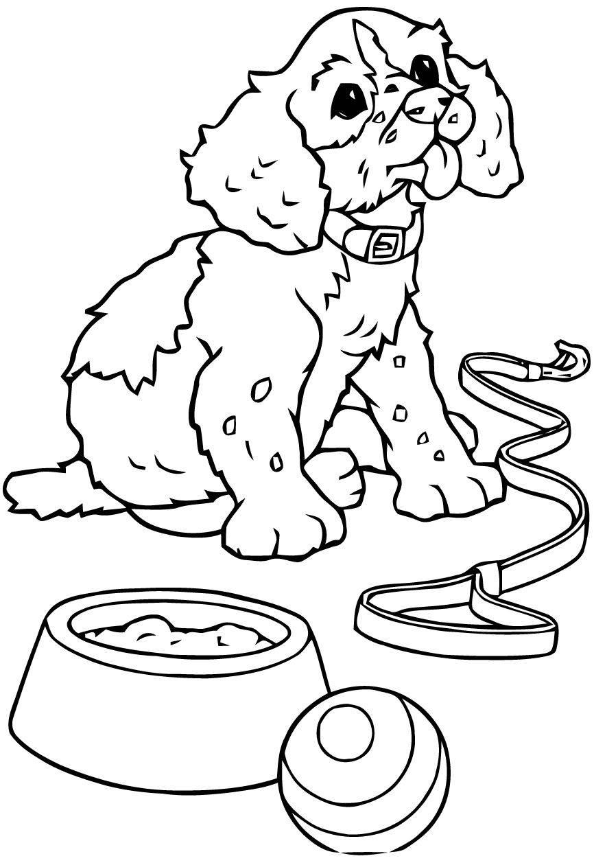 Раскраска: собаки и кошки
