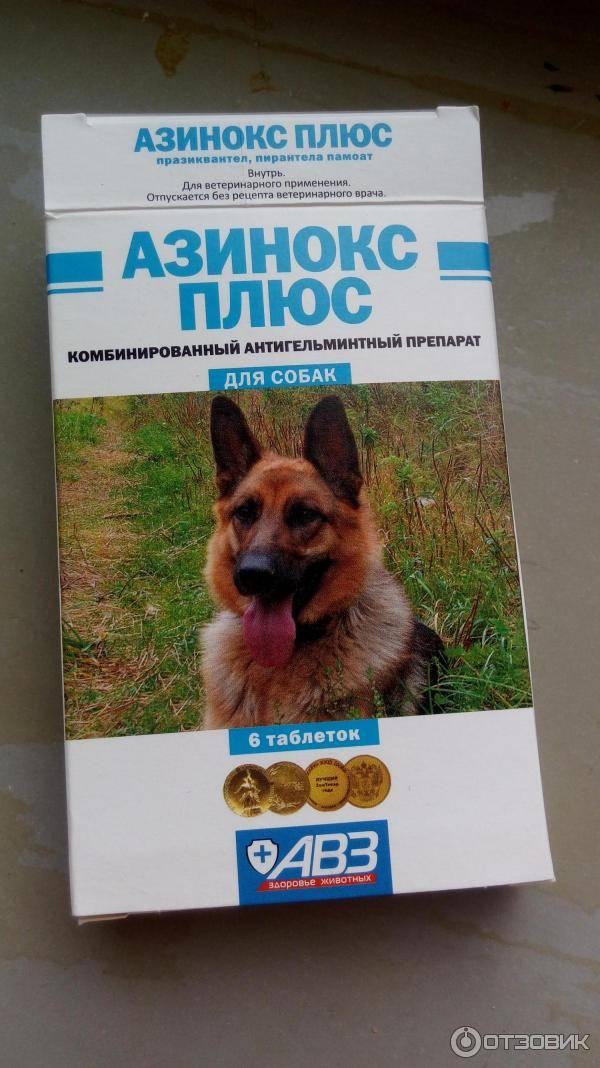 Азинокс для кошек – лекарство от гельминтов