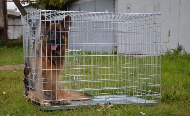 Вольер для маленьких собачек в квартире