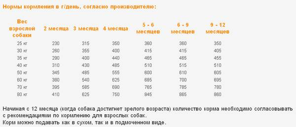 Вес чихуахуа по месяцам и неделям: таблица