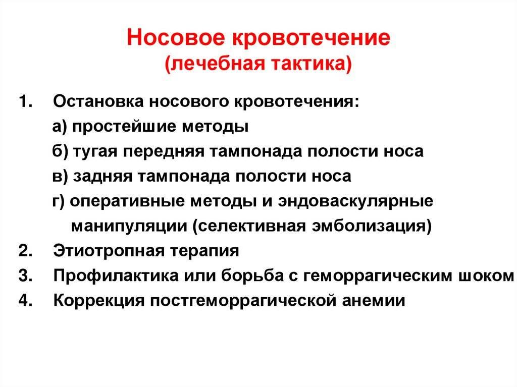 """Кровотечение из носа у собак  - причины и лечение эпистаксиса у собак в москве. ветеринарная клиника """"зоостатус"""""""